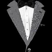 Realistic Tuxedo bow tie and sear sucker