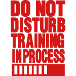 DO NOT DISTURB TRAINING IN PROCESS