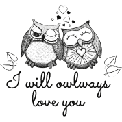 i will owlways love you owls