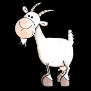 Charming Goat - Goats