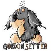 Sweet Gordon Setter - Dog - Dogs