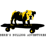 beres_bulldog