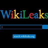 Design ~ wikileakssearch
