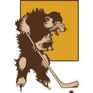Design ~ Vintage Boston Hockey