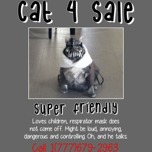 cat4sale2nobgblackshirt