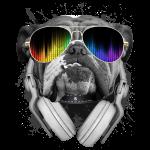 Bulldog Dj
