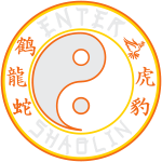 Enter Shaolin Main Logo 4 Dark Colors