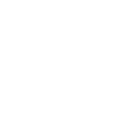 Absolutely All The Beer