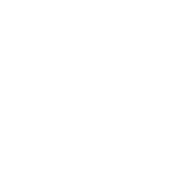 I may be slow but i run faster than the government