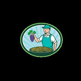 Farm Boy Holding Grapes Bowl Raisins Oval Retro