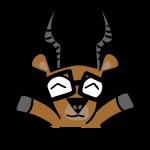 impala_race_starter