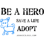 Be A Hero: Save a Life, Adopt Blue Dog