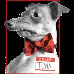 classic tuna - 3.00