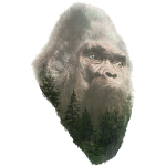 Forest King Sasquatch Bigfoot Portrait