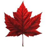 Canada Souvenir Maple Leaf Art Gifts