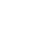 PIRATE (wht)