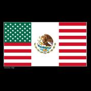 Mexico USA Flag