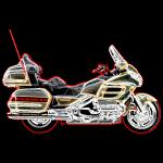 bkwingneon200