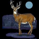 future_deer2