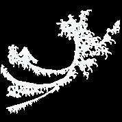 White Surfing Wave Design