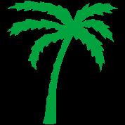 Tropical Beach Palm tree 2
