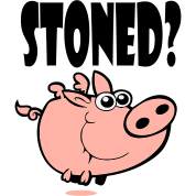 Stoned Pig