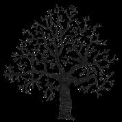 Roots Tree Design