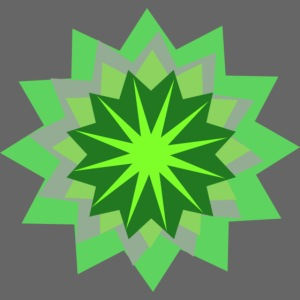 12 point star
