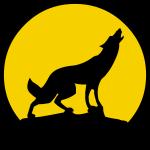 Silhouette coyote