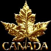 Cool Canada Maple Leaf Souvenir