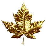 Gold Canada Maple Leaf Souvenirs Gifts