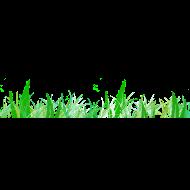 Design ~ Grass