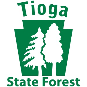 Tioga State Forest Keystone (w/trees)