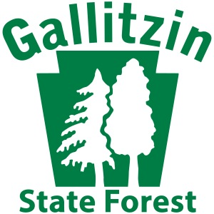 Gallitzin State Forest Keystone (w/trees)