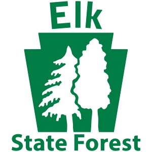Elk State Forest Keystone (w/trees)
