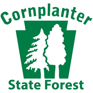 Cornplanter State Forest Keystone (w/trees)