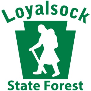 Loyalsock State Forest Keystone Hiker female
