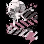 cracked_skull