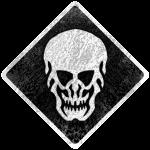 DS-Skull Black+White