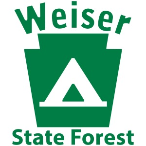 Weiser State Forest Camping Keystone PA