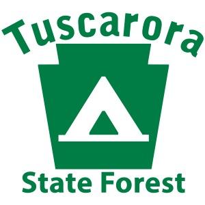 Tuscarora State Forest Camping Keystone PA