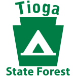 Tioga State Forest Camping Keystone PA