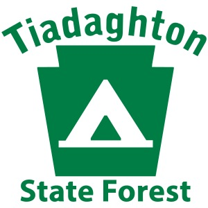 Tiadaghton State Forest Camping Keystone PA