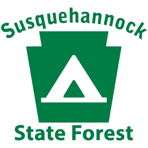 Susquehannock State Forest Camping Keystone PA
