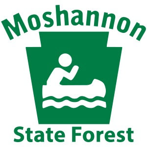 Moshannon State Forest Boating Keystone PA