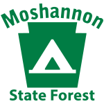 Moshannon State Forest Camping Keystone PA