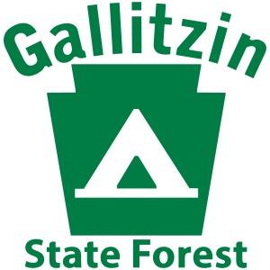 Gallitzin State Forest Camping Keystone PA