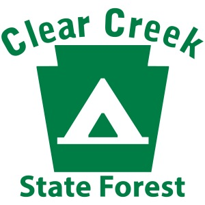 Clear Creek State Forest Camping Keystone PA