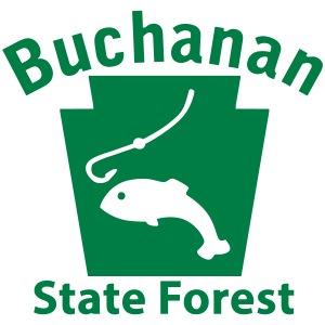 Buchanan State Forest Fishing Keystone PA