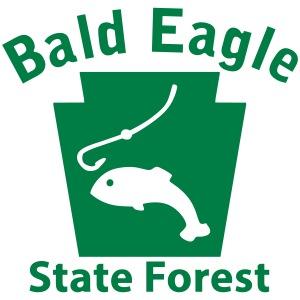 Bald Eagle State Forest Fishing Keystone PA